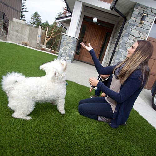 image of Pet friendly artificial grass for your furry friends available at SYNLawn Idaho